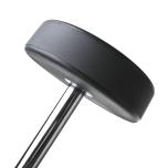 Fasta raka skivstänger med PU gummi, Thor Fitness