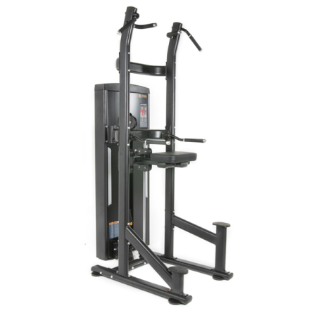 Assist Chin/Dip 100 kg, TF Standard