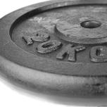 Viktskivor, gjutjärn (25 mm Ø)
